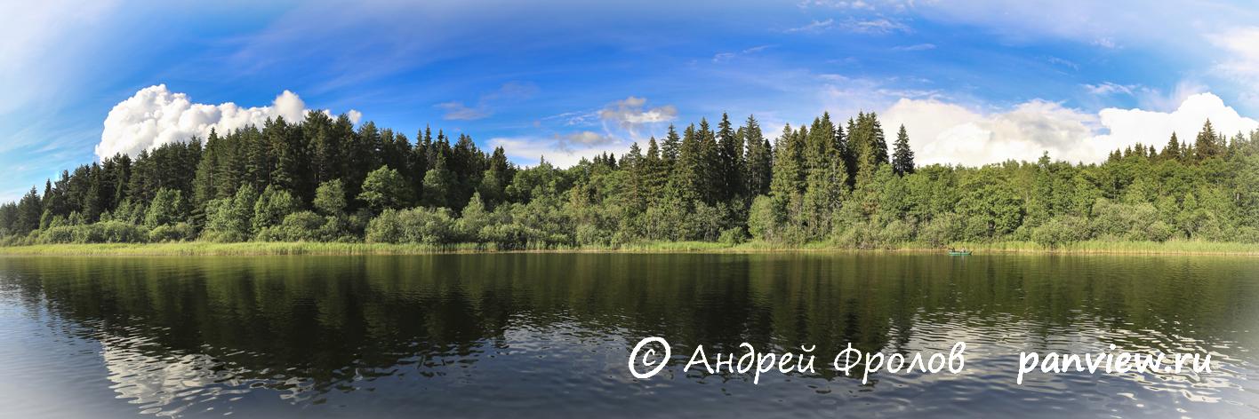 Берега озера Белое
