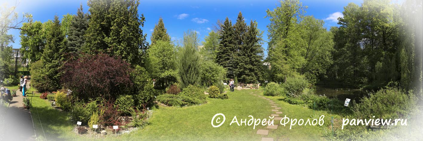 Ботанический сад в Твери